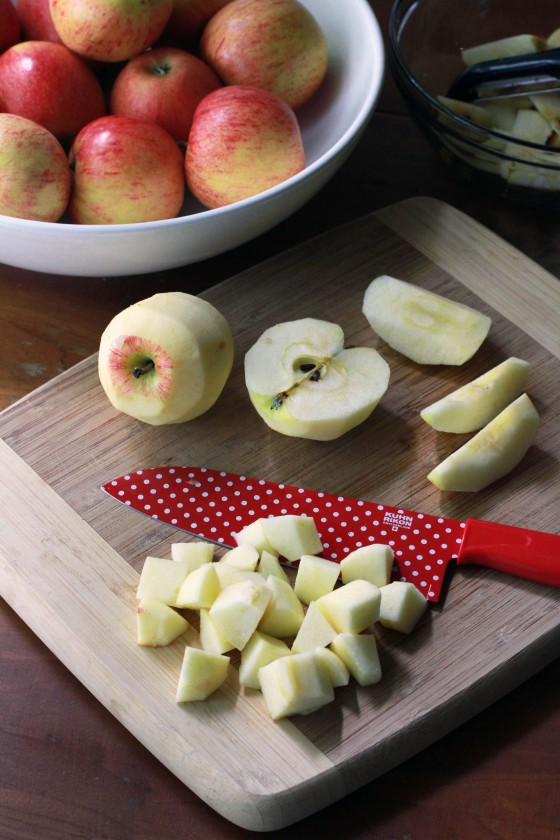 How to Turn Apples into Baby Food | www.mylifeasamrs.com